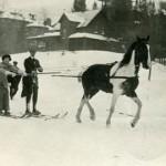 skijoringhistory-500x270
