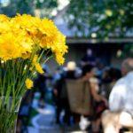 flowersatconcert-1